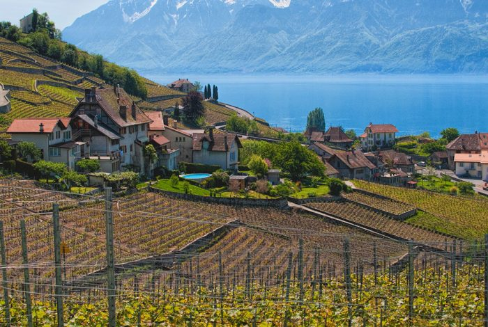 Wine-Country-Tour